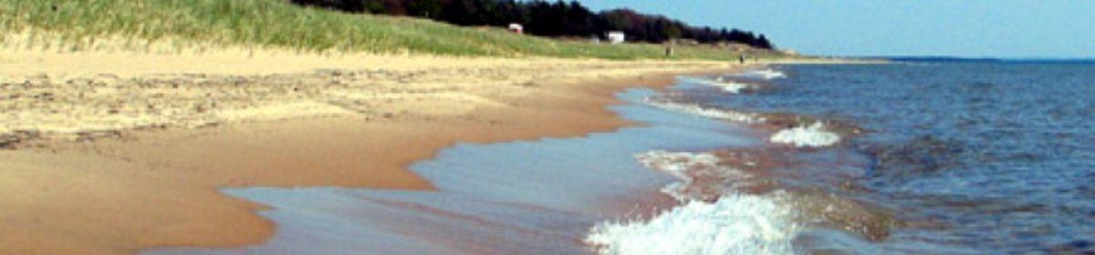 Save Our Shoreline